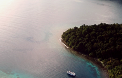 Introducing Solomon Islands Discovery Cruises
