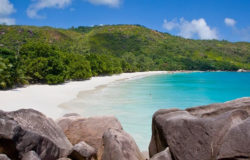 Leasehold versus freehold hotel operating licenses in Seychelles