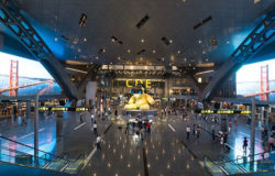 Doha rolls out self-service check-in and bag drop